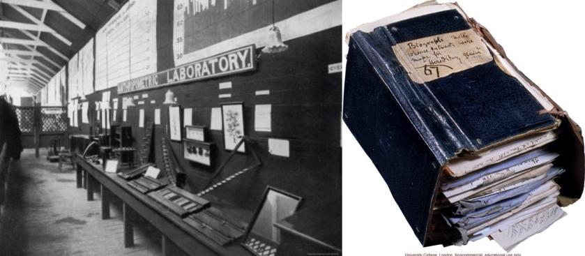 Francis Galton的人體測量實驗室及著作-遺傳天才